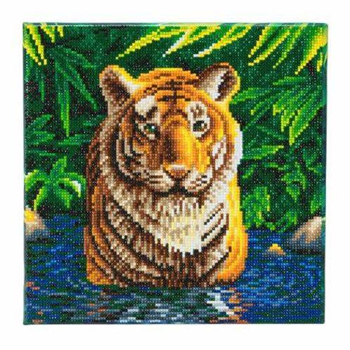 "Crystal Art 12""x12"" Tiger Pool"