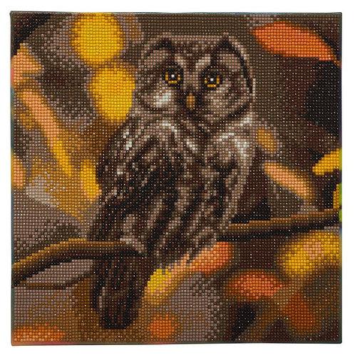 "Crystal Art 12""x12"" Tawny Owl"