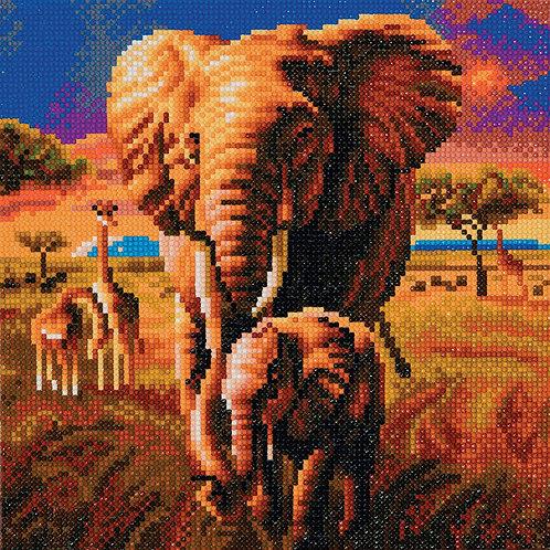 "Crystal Art 12""x12"" Elephants of the Savanah"