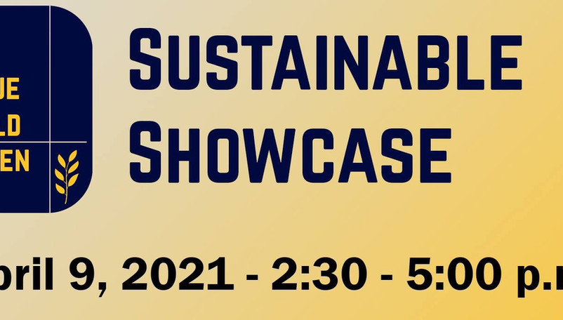 Experts, artists presenting at Appalachian sustainability showcase