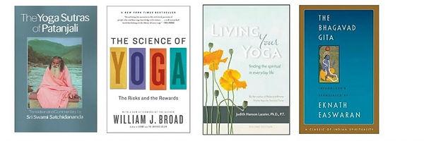 Ambassador-Book-covers-1024x341.jpg
