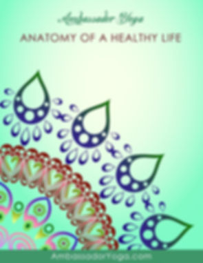 Anatomy of a Healthy Life - Manual Cover