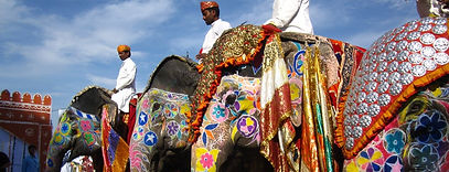 Elephant Festival - Jaipur