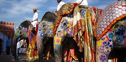 Elephant Festival Jaipur solo women tours