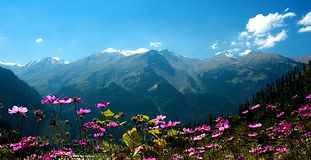 Himalaya Treks and Hills Stations - Beauty of India Tours