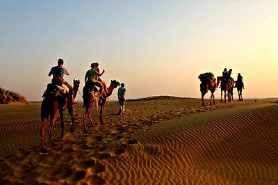 Thar Desert Camel Tour