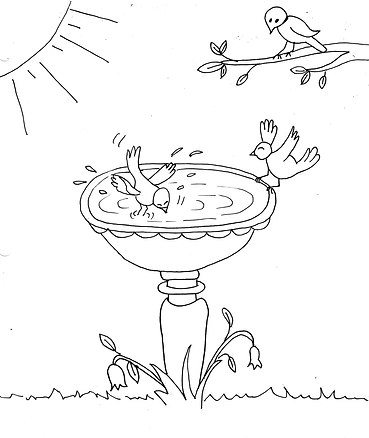 bird colouring page.png
