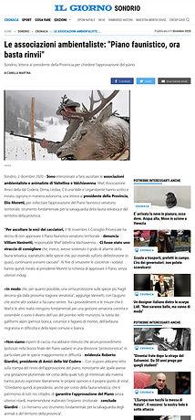 Scr- Il Gio-2-12.jpg