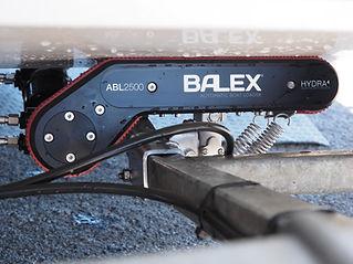 balex.jpg
