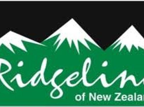 Ridgeline Mens Gale Puffa Jacket -Black