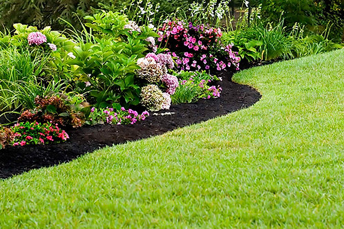 Landscaping + Lawn + Pest Care