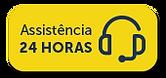 assistencia2.png