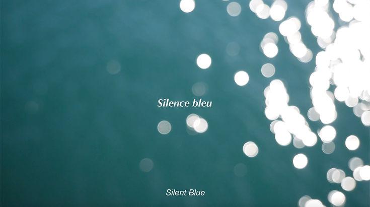 Silence bleu - copie.jpg