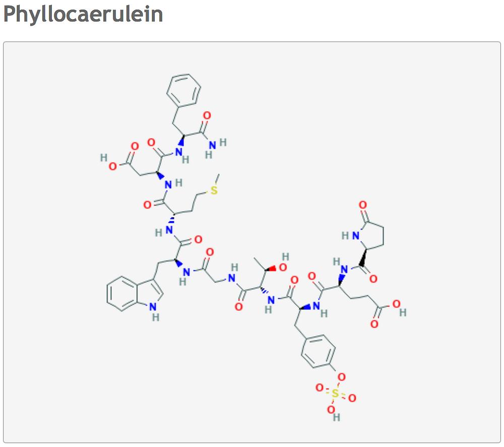kambo biopeptide phyllocaenulein