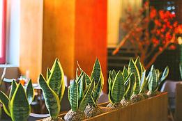 Instalação restaurante Arigato Lisboa