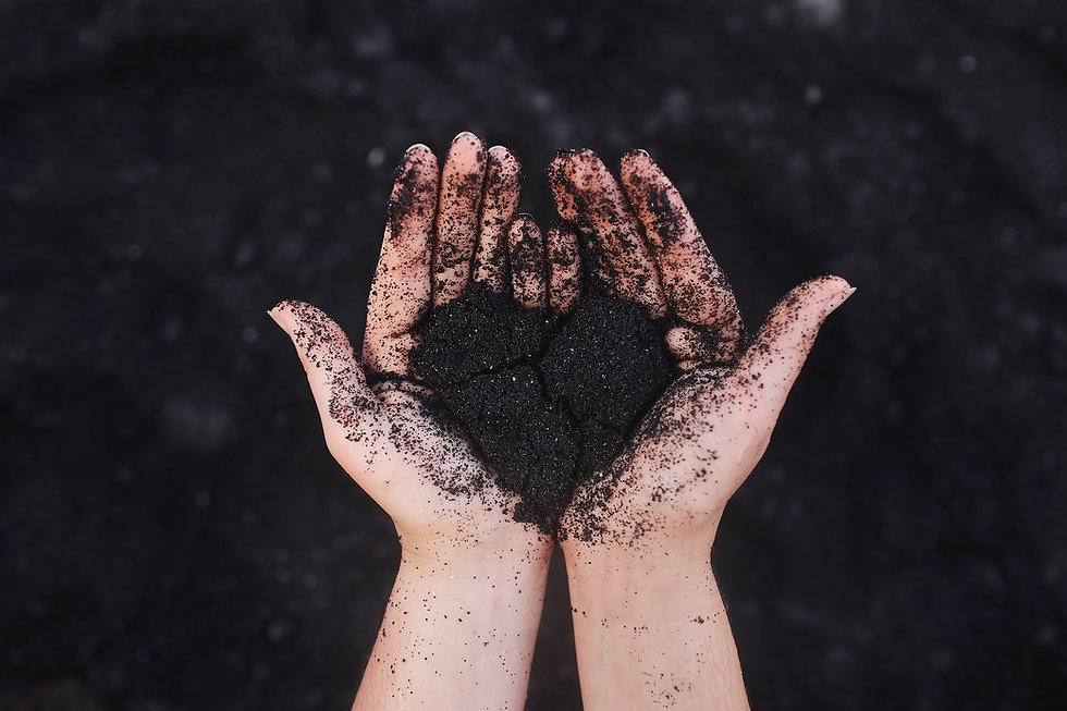 dirt heart and hands-unsplash.jpg