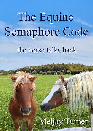 The Equine Semaphore Code - the horse ta