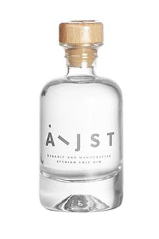 Aeijst - Pale Gin 0,04l Bio AT-BIO-402