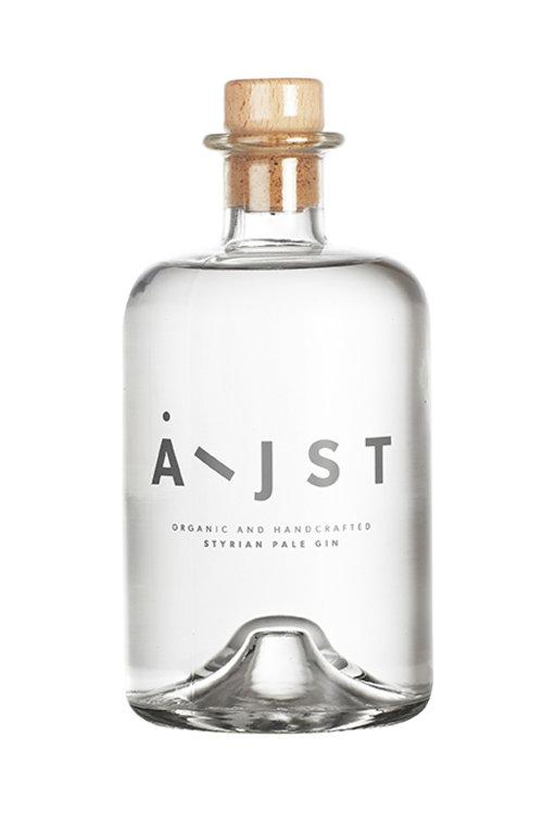 Aeijst - Pale Gin 0,5l Bio AT-BIO-402