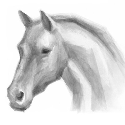 HORSES STUDY I