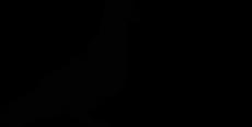 New logo bird title 2.png