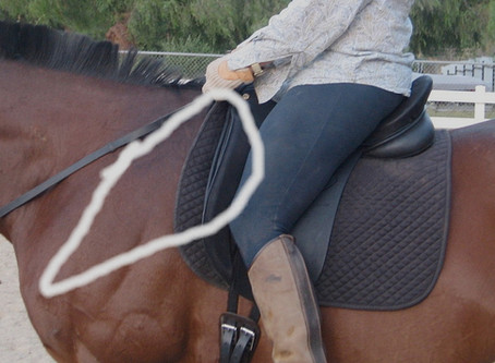 The Importance of a Well-Fitted Saddle