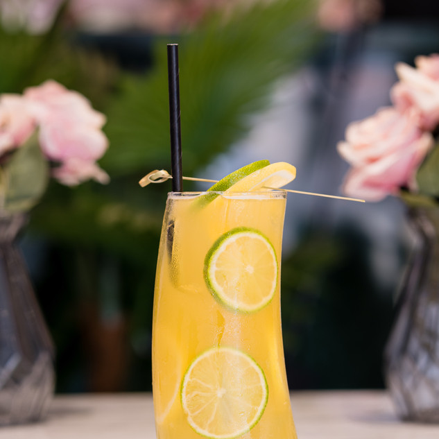 Nonsuch Cocktails--13.jpg