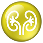 nephrology_Icon2.png