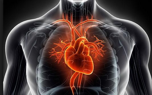 cardiothoracic_surgery.jpg