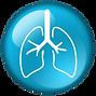 pulmonary_Icon2.png