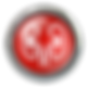 nephrology_red_3d_button.png