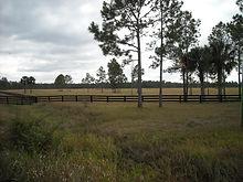 Saddle Ridge and Pine Island 036.JPG