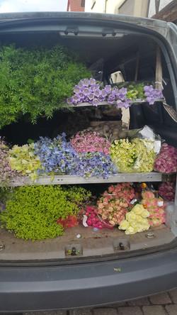 Blumen-Bechstein_Handwerk-Team_02