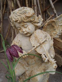 Blumen-Bechstein_59