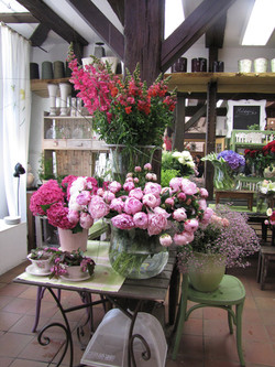 Blumen-Bechstein_47