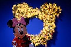 Disney Minnie.jpg