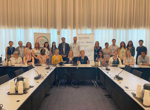 Bringing Nutrition into Health Systems: NNEdPro Global Nutrition Workshop for WHO Interns