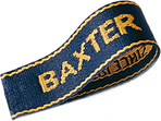 logo baxter.png