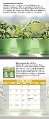 e-mars-deco-2022.png