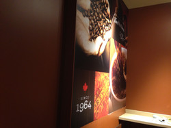 wall graphic Timmies