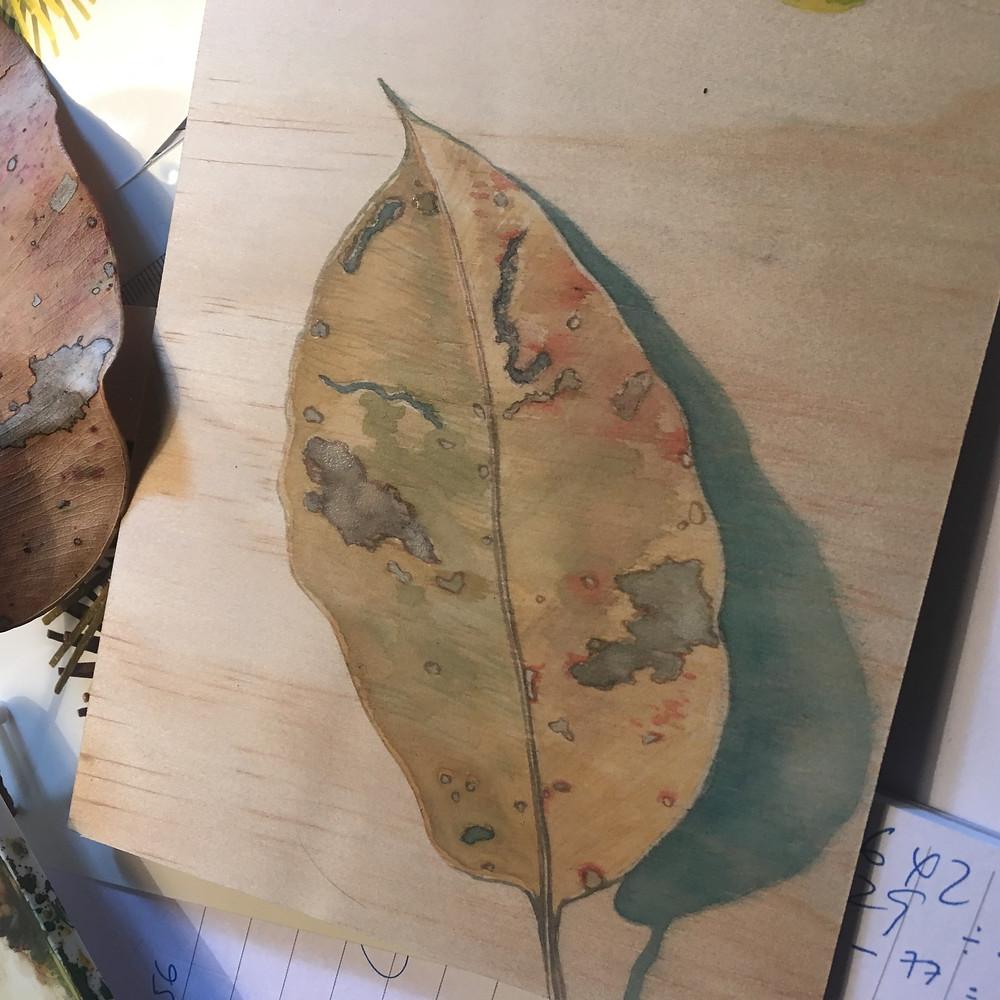 Leaf portrait by Sarah Thornton Smith donation for Army Art