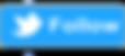 Twitter banner logo.png
