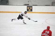gac hockey.jpg
