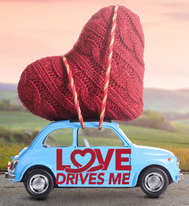 Love Drives Me Campaign Logo