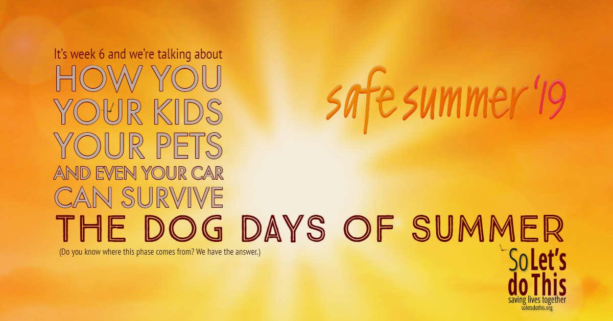 Dog Days of Summer.jpg