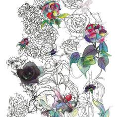 roses (LS-FLORAL-A2-001).jpg