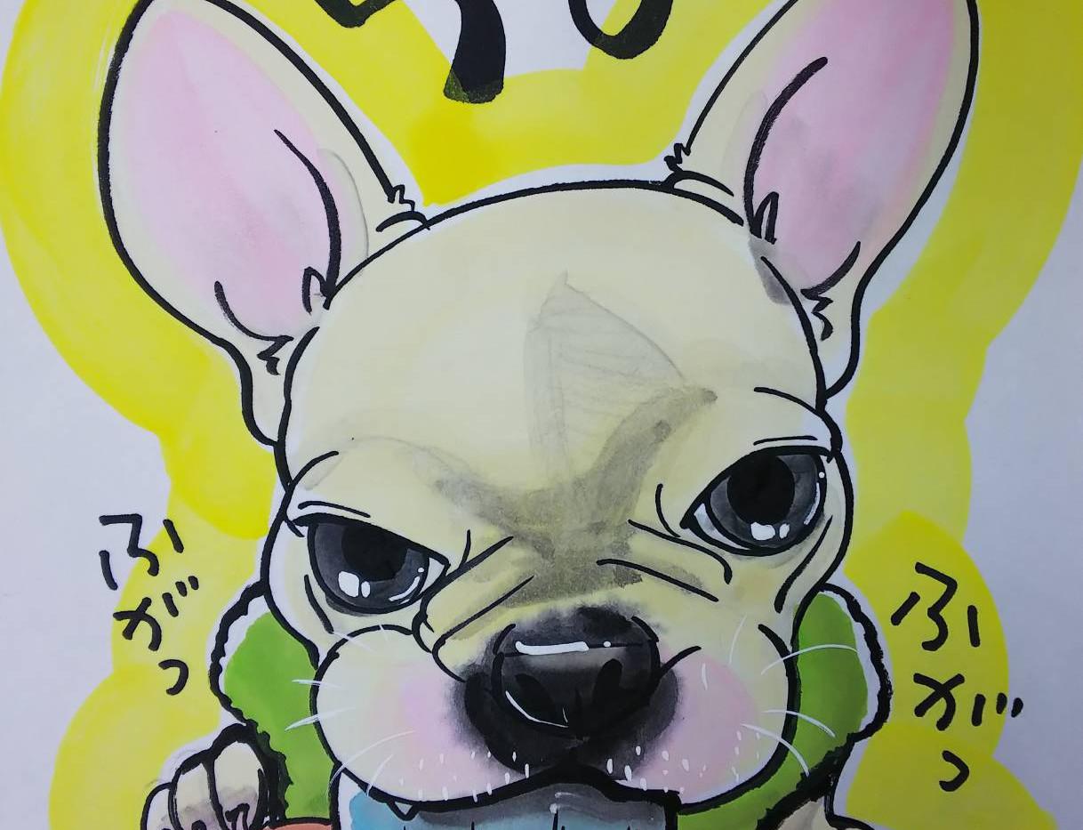 アナログ/スタンダード