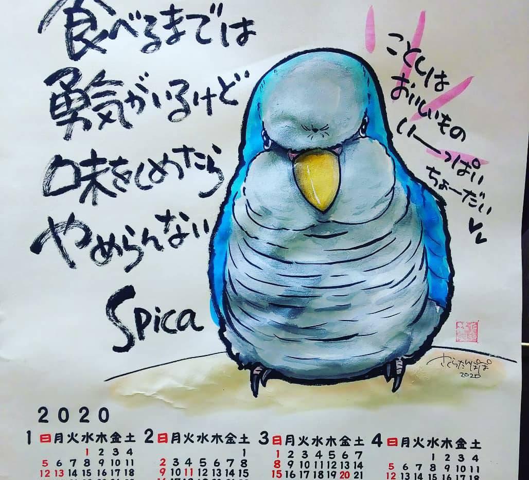アナログ/ペットインスピ/カレンダー