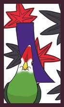 アカガシラエボシドリ