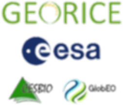georice_logos_transp_small.png